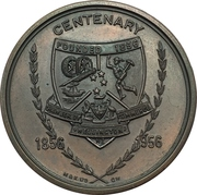 Medal - Centenary of the Chamber of Commerce of Wellington – obverse