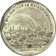 Medal - Flood of Nuremberg 1784 – obverse