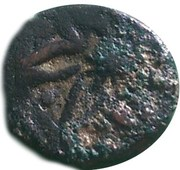 Manghir - Anonymous (attributed to Bayezid II, Tire, with star-shaped flower) – obverse