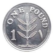 1 Pound (Silver) – reverse