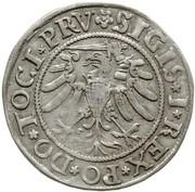Grosz elbląski - Zygmunt I Stary (Elbląg mint) – obverse