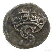 Denar pruski - Zygmunt I Stary (Toruń mint) – obverse