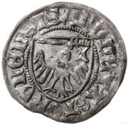 Szeląg toruński - Kazimierz IV Jagiellończyk (Toruń mint) -  reverse