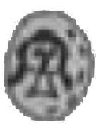 Obol - Kazimierz III Wielki (Kraków mint) – obverse
