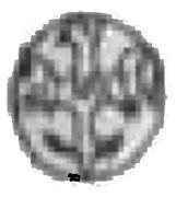 Obol - Kazimierz III Wielki (Kraków mint) – reverse