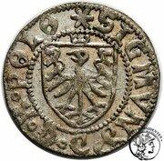 Szeląg gdański - Zygmunt I Stary (Gdańsk mint) – obverse