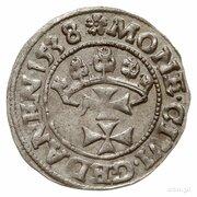 Szeląg gdański - Zygmunt I Stary (Gdańsk mint) – reverse