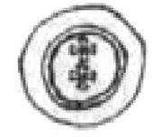 Brakteat gdański - Kazimierz IV Jagiellończyk (Gdańsk mint) – obverse