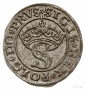 Szeląg pruski - Zygmunt I Stary (Toruń mint) – obverse