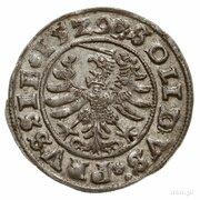 Szeląg pruski - Zygmunt I Stary (Toruń mint) – reverse