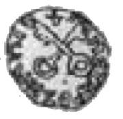 Denar poznański - Kazimierz III Wielki (Poznań mint) – reverse
