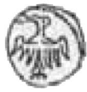 Denar poznański - Ludwik Węgierski (Poznań mint) – obverse