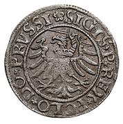 Szeląg elbląski - Zygmunt I Stary (Elbląg mint) – obverse