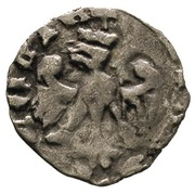 Denar poznański - Kazimierz III Wielki (Poznań mint) – obverse