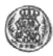 Halerz - August II Mocny (Lipsk mint) – obverse