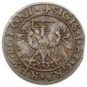 Szeląg gdański - Interregnum (Gdańsk mint) – obverse
