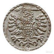 Denar gdański - Zygmunt III Waza (Gdańsk mint) – reverse