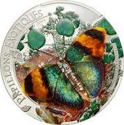 1000 Francs CFA (Gold Banded Forester) – reverse