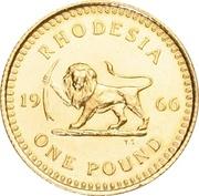 1 Pound - Elizabeth II (2nd portrait) – reverse