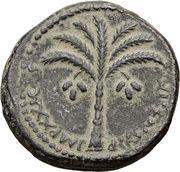 Dupondius - Domitianus (Judea Capta) – reverse