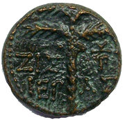 Bronze Drachm of Tyre (Tyche and palm tree, 3rd type) – reverse