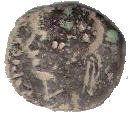 AE - Caligula (Nysa-Scythopolis mint) – obverse