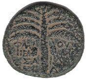 AE - Domitian (Neapolis mint) – reverse