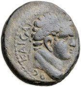 As - Domitianus (Antiochia ad Hippum mint) – obverse