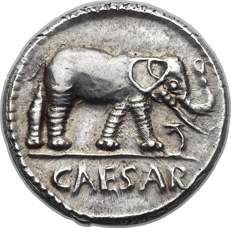 Denarius julius caesar caesar elephant rome numista denarius julius caesar caesar elephant freerunsca Images