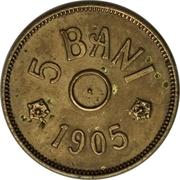 5 Bani - Carol I (Pattern Strike) – reverse