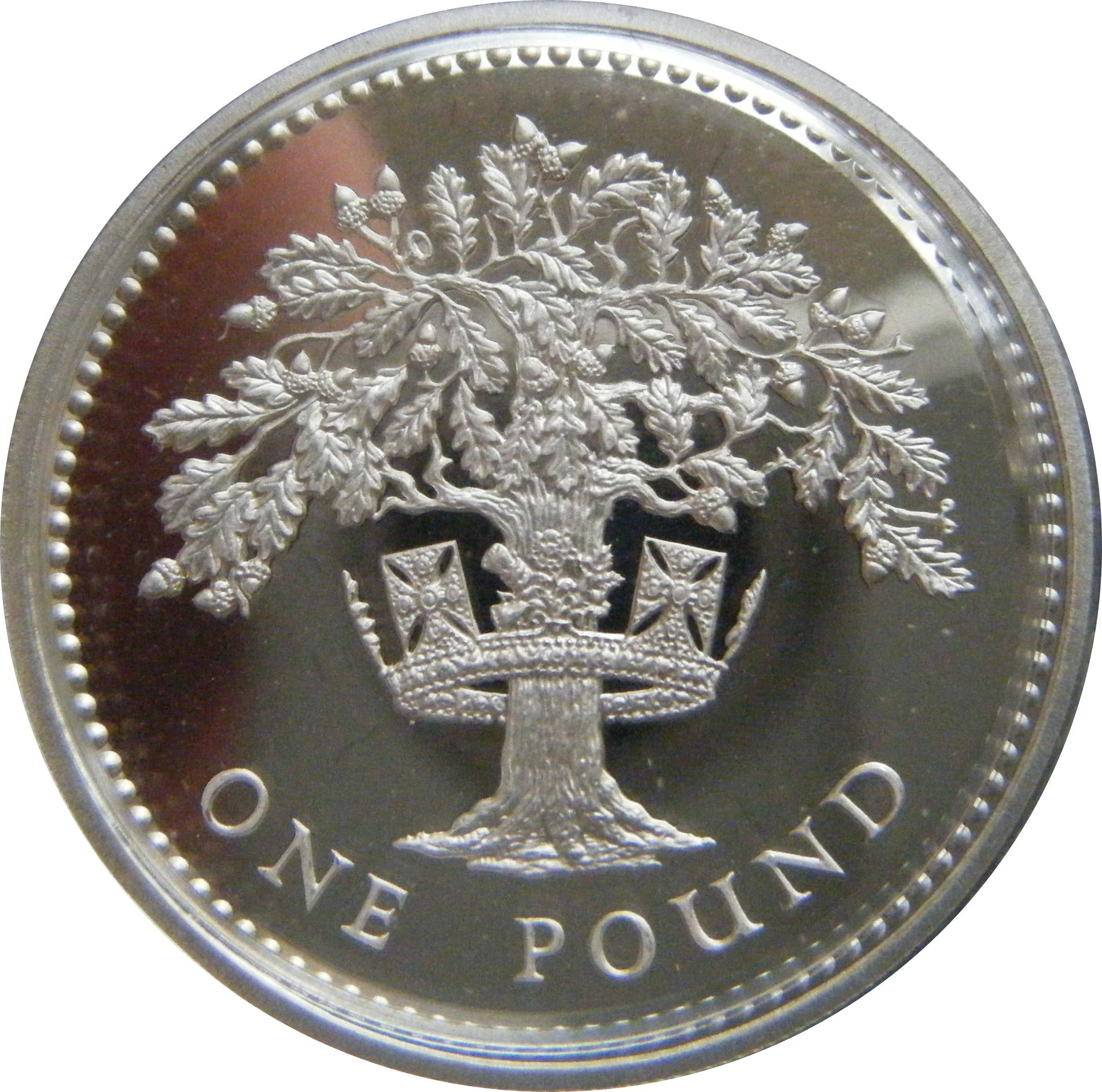 1 Pound Elizabeth Ii English Oak Silver Proof