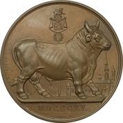 Medal - British Army on the Scheldt – reverse