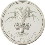 1 Pound - Elizabeth II (Welsh Leek; Silver Proof) -  reverse