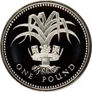 1 Pound - Elizabeth II (Welsh Leek; Silver Piedfort) -  reverse