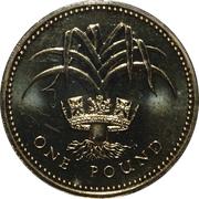 1 Pound - Elizabeth II (3rd portrait; Welsh Leek) -  reverse