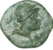 Dichalkon - Seleukos III -  obverse