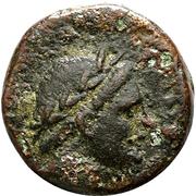 Bronze Æ18 - Antiochos II Theos – obverse