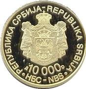 10 000 Dinara (Nikola Tesla) – obverse
