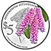 5 Dollars (Dendrobium Secundum) -  reverse