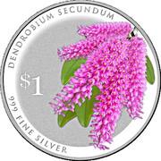 1 Dollar (Dendrobium Secundum) -  reverse