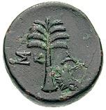Bronze Æ20 – reverse