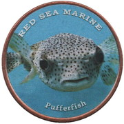 1 Shilling (Pufferfish) – reverse