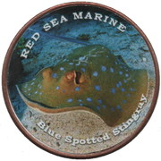 1 Shilling (Blue spotted stingray) – reverse