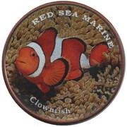 1 Shilling (Clownfish) – reverse
