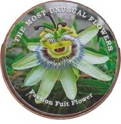 1 Shilling (Passion Fuit Flower) – reverse