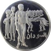 Medal - United Nations (Sudan) – obverse