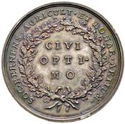 Medal of Merit (Canton of Bern) – reverse