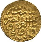 Sultani - Murad III (Damascus) – reverse