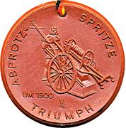 Medal - Freiwillige Feuerwehr Riesa (Abprotzspritze Triumph) – obverse