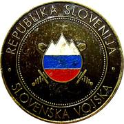 Medal - NATO member Slovenia – obverse